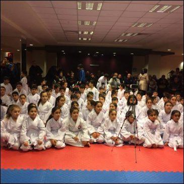 1.Kulüpler Arası Karate Şampiyonası
